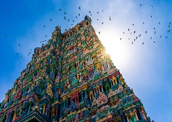 Exotic South India Highlights